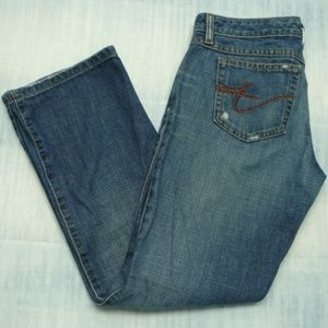 Tommy Hilfiger Jeans  Distressed Signature Pockets
